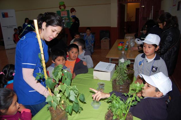 1ª Feria Escolar de Ciencia y Tecnología Malleco 2