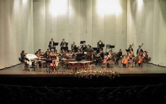 Cuatro Estaciones de Vivaldi este viernes en Teatro Municipal de Temuco