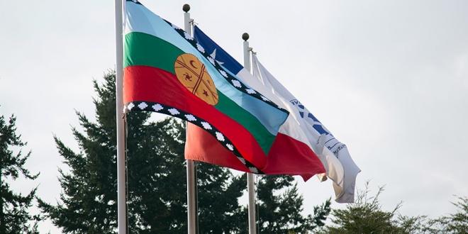 banderas ufro mapuche