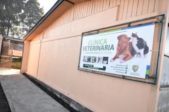 clinica veterinaria temuco
