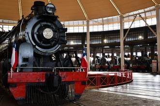 tren araucania