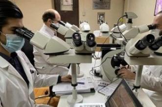 microscopio hhha